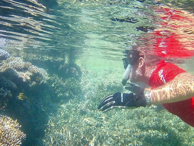 Jake snorkeling in a tide pool